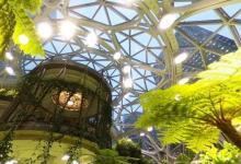 Amazon открыла сферические офисы-джунгли в центре Сиэтла