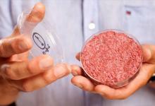 Бургеры с искусственным мясом появятся в ресторанах в 2021 году