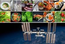 Еда из воздуха: как космическая технология прошлого поможет в создании устойчивого будущего