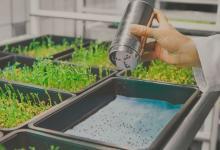 Гидропонная экоферма для дома от IKEA вырастит овощи в три раза быстрее теплиц