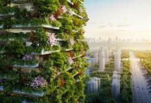 В Китае построят «лесной город» из небоскребов с вертикальными садами