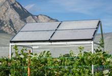 Прозрачная солнечная крыша для агровольтаики генерирует энергию с КПД 30%