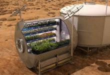 NASA: учёные позаботятся о пище для марсианских колонистов