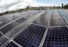 SoftBank обещает бесплатное солнечное электричество уже через 25 лет