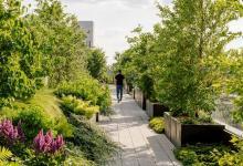 В дизайнерский жилой комплекс с парк-фермой на крыше превратили промышленное здание Нью-Йорка (видео)
