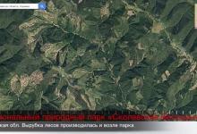 Видео: масштабы вырубки лесов украинских Карпат от Google Timelapse