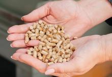 Рынок биотопливных котлов в Украине растет рекордными темпами