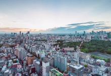 Исследование: небоскребы в городе растут, как живые организмы