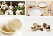 Посуда, превращающаяся в удобрение, бургеры из личинок. В Украине воплощают новые экологические проекты