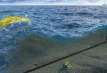 Создан новый электрогенератор, собирающий энергию волн