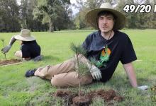 Ютуберы таки собрали $20 млн на посадку 20 млн деревьев