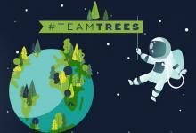 #TeamTrees: звезды YouTube соберут $20 млн на посадку 20 млн деревьев