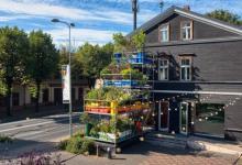 Продукты городских вертикальных садов проверят на безопасность для здоровья