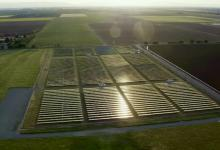 Исследование: солнечные электростанции на месте табачных плантаций принесут больше выгоды фермерам