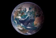 ООН предложила новый план защиты биоразнообразия Земли