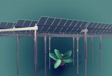 Солнечный «Агротреккер» Axial разработан с учетом требований к освещению различных сельхозкультур