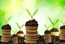 В Украине хотят ввести «зеленые» бонды для финансирования «зеленых» проектов