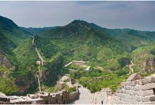 Китай планирует высадку лесов величиной с Ирландию