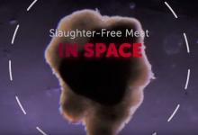 Впервые искусственное мясо выращено в космосе (видео)