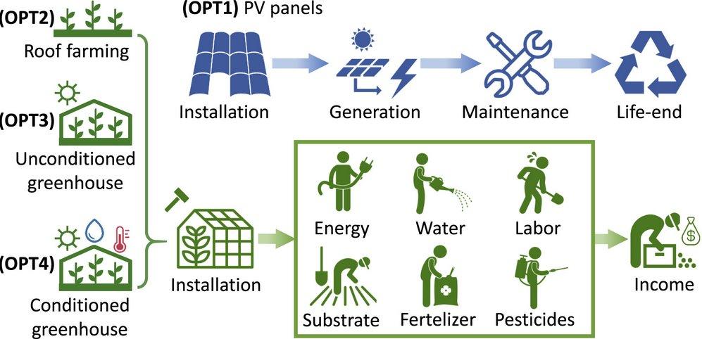 Исследование солнечные батареи или зеленые насаждения  что лучше размещать на крыше?