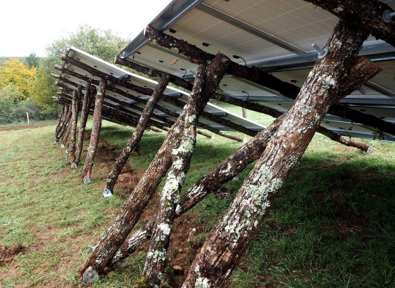 Солнечные батареи на деревянных опорах