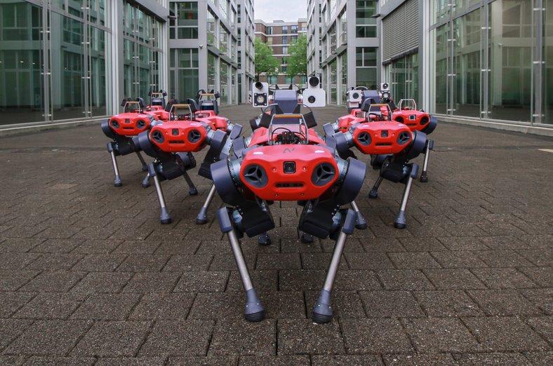 Четырехногий робот ANYmal получил инвестиций на 20 млн