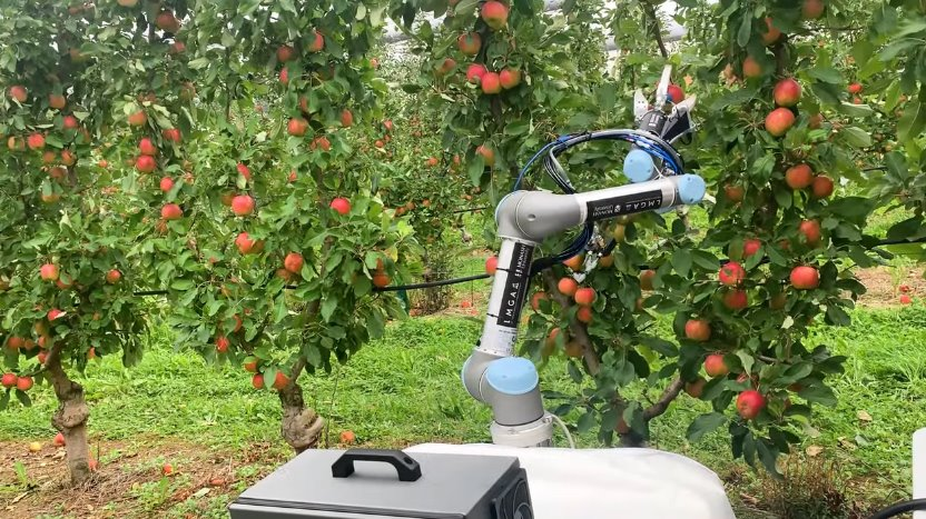Робот для сбора урожая срывает до 9 яблок за минуту - ЭкоТехника