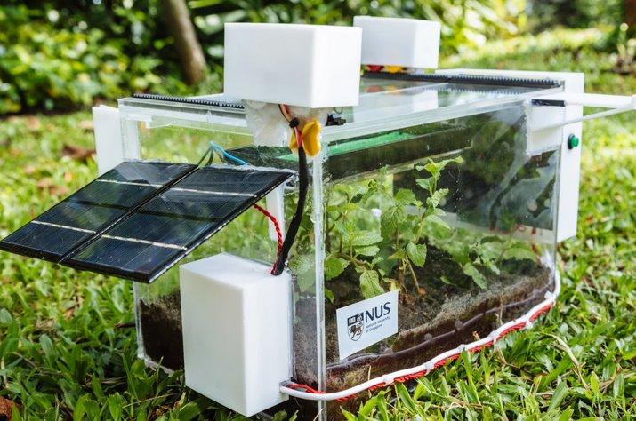 Автономная домашняя теплица SmartFarm снабжает растения водой из воздуха