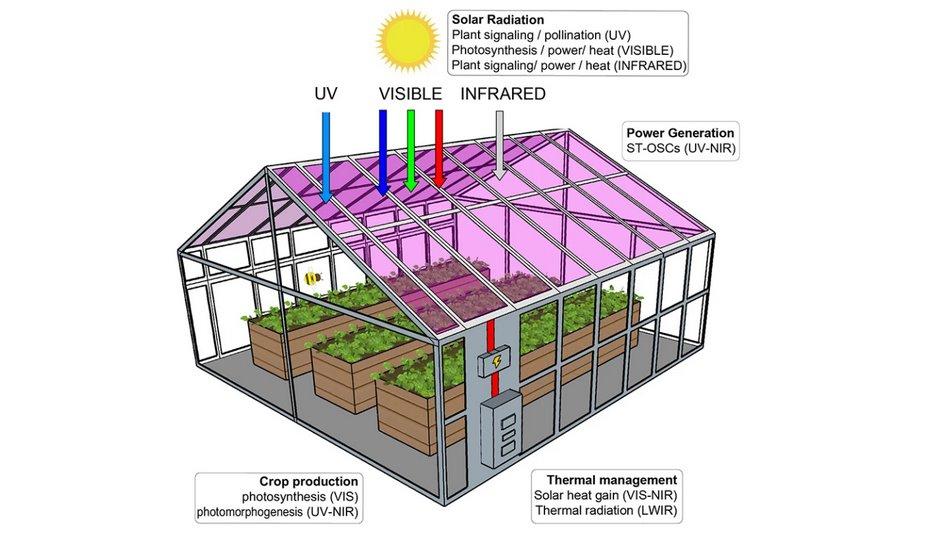 Теплица из солнечных модулей