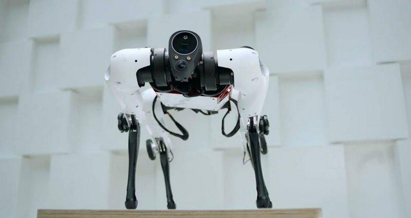 четвероногий колесный робот