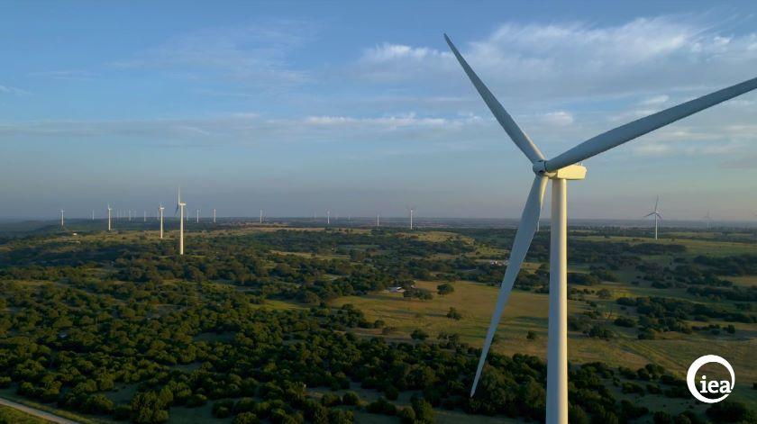Украина построит крупнейшую в Европе ВЭС мощностью 500 МВт