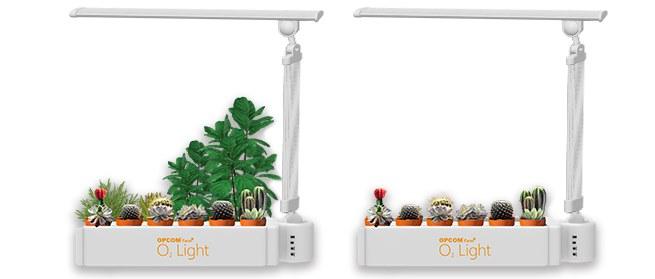 настольная светодиодная лампа для растений