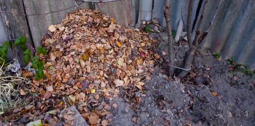 перегной из листьев деревьев в мешках