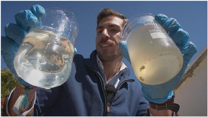 Новая технология очищает воду за счет электробактерий - быстро и без запаха
