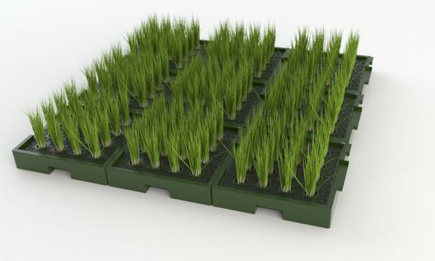 растительно-микробный топливный элемент